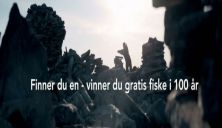 Fjellstyrene 100 år - Feirer med 100 gaver - Finn og vinn i fjellet i sommer!