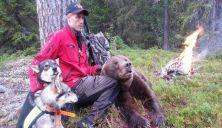 Inntil seks bjørner kan lisensfelles