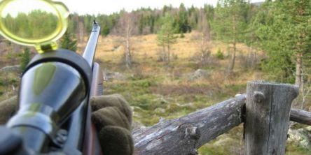 Nå starter solojakta på elg
