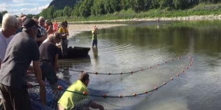 Notkastfiske for første gang på 36 år!